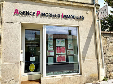 Façade enseigne Agence Pingrieux