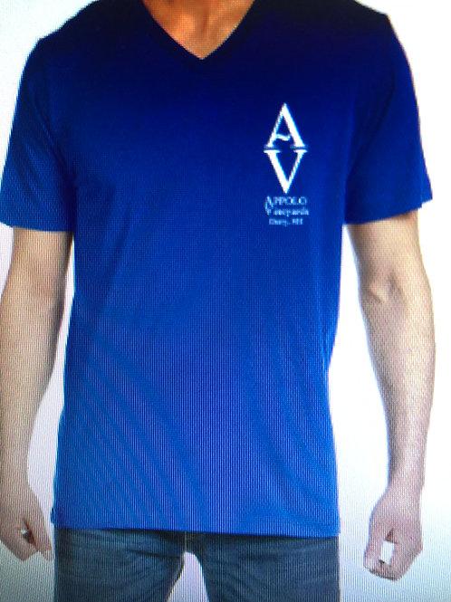 Blue Men's V-Neck Logo Tee