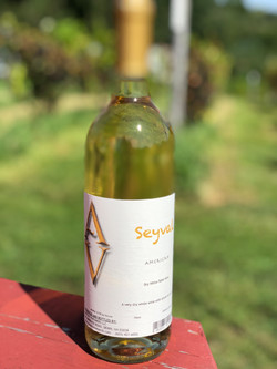 Seyval2