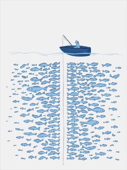 Catching-not-fishing1.jpg