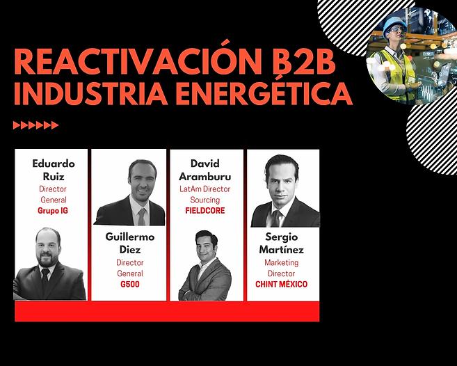 2._Industria_Energética_Panel_2020.web