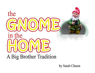 gnome in the home cover.jpg