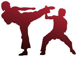 Which Martial Art is Right for Me?