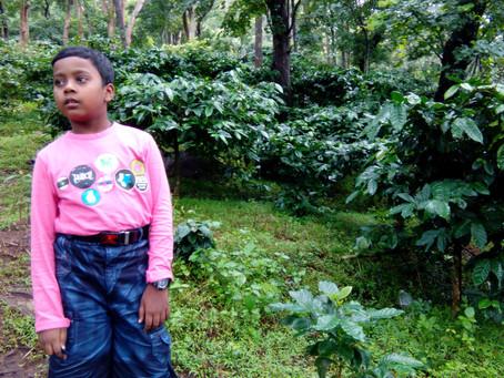 Touching the Rain :  Travelling Araku Valley (Hindi)