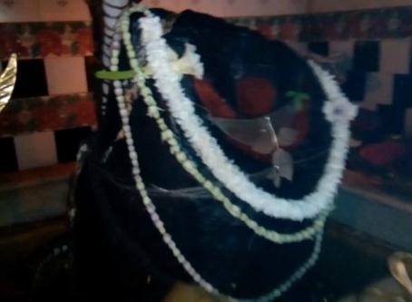 दक्षिणेश्वर शिव मंदिर (एक वृत्तचित्र)