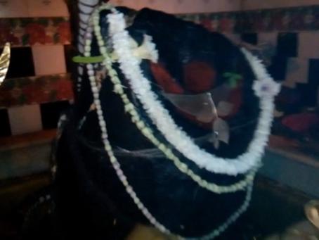 দক্ষিণেশ্বর শিব-মন্দির (একটি তথ্যচিত্র)