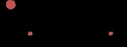 color x-ray guys logo