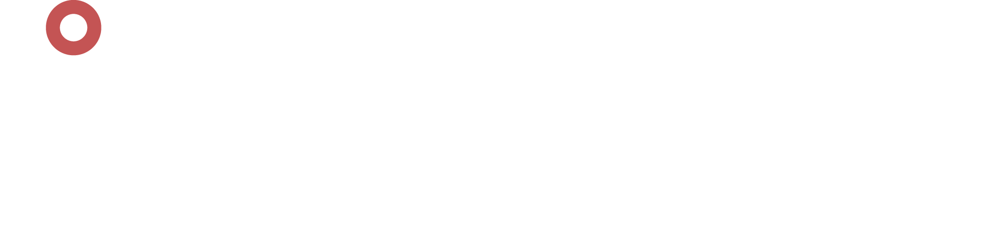 white x-ray guys logo