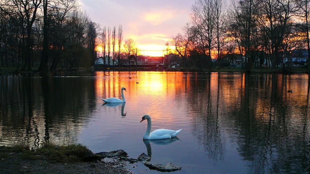 Lac de Gagny