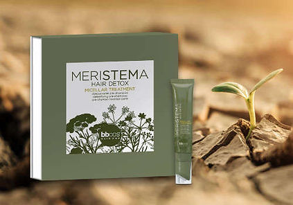 meristema-micellar-treatment-pre-shampoo