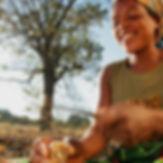 Femme cultivant le Mongongo pour créer une huile à la base de la coloration pure pigments