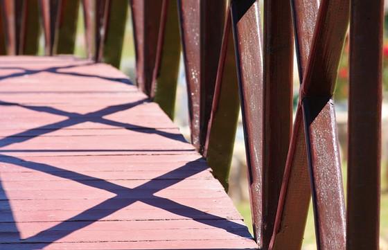 הכללים הבריאטריים: קללה, ברכה או המעבר הבטוח?