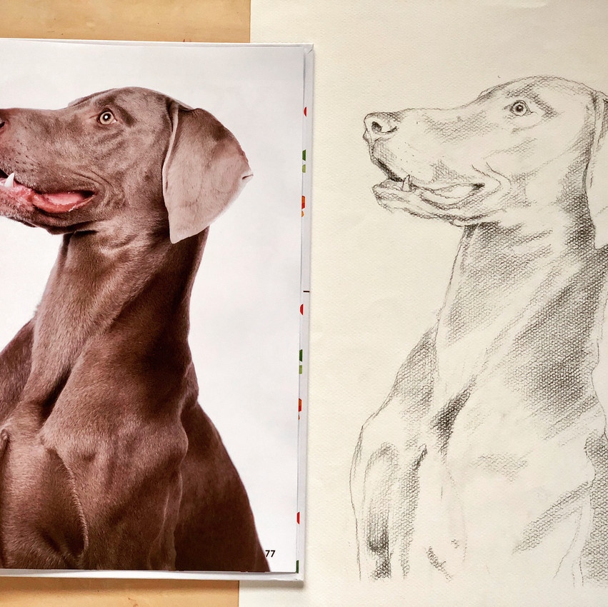 Value of Drawing from Observation