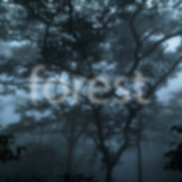 Forest Jacket English.jpg