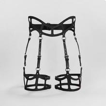 Fleet Ilya harness