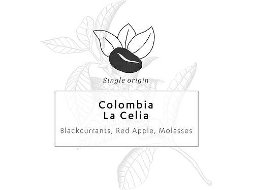 Colombia La Celia Women's Group