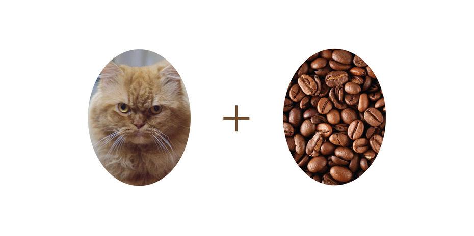 cat-coffee-logo.jpg