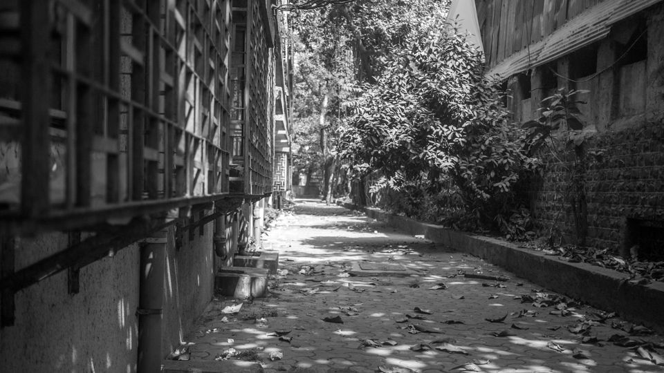 alley-picture.jpg