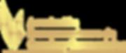 AICC COACHIN COMERCIAL, COACH ANDRES BENAVIDES
