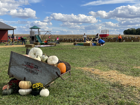 Our First Weekend of 2021 at the Pumpkin Patch
