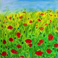 Vlčí máky za letního vánku/Poppies in the Summer breeze
