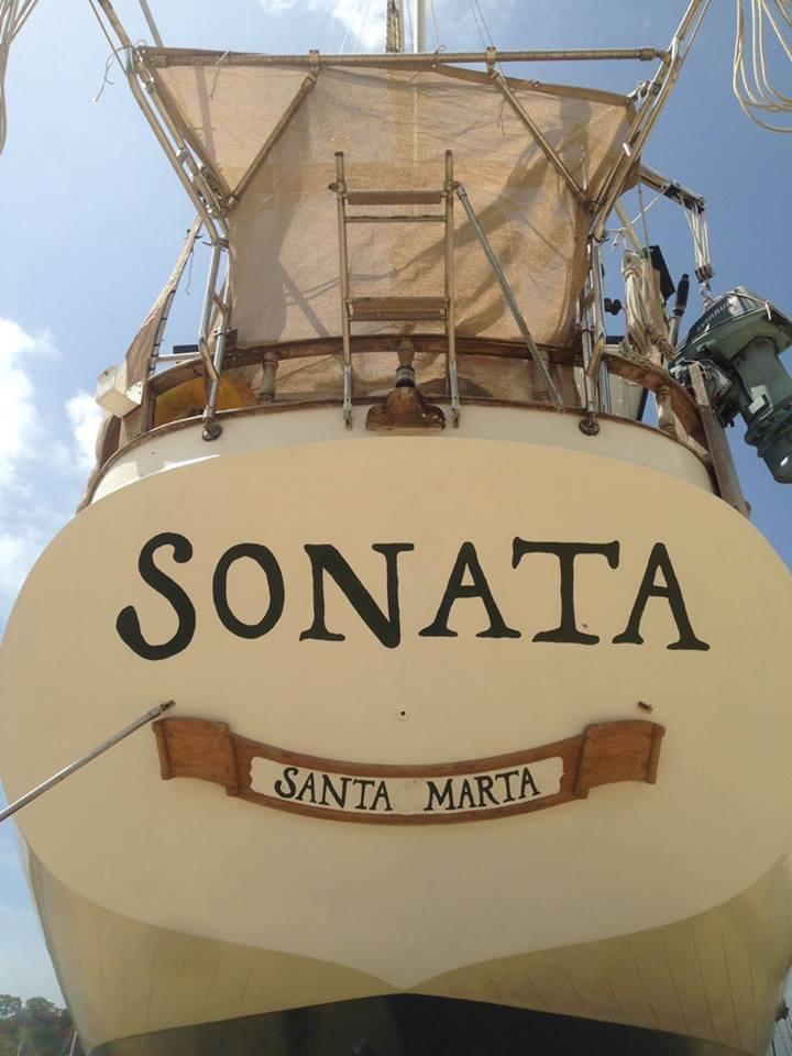 sonata close up.jpg