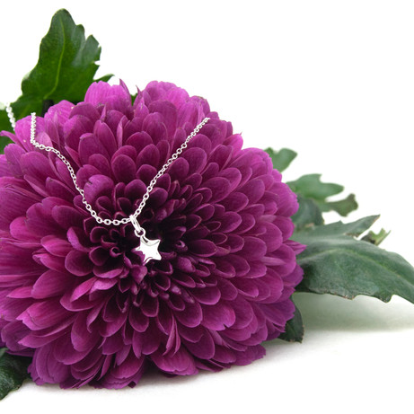 Little Star Jewellery