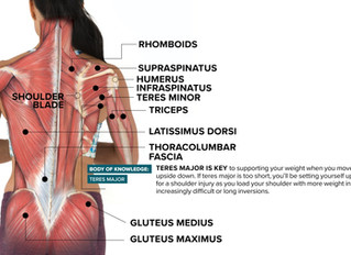 How the teres major can make or break healthy shoulder in inversions.