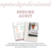 Shopify Resume Audit Product.png
