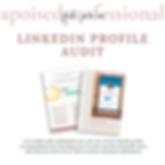 LinkedIn Audit IG Graphic.png