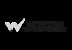 Chetan Sanhavi Logo