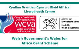 Wales for Africa funded water pump