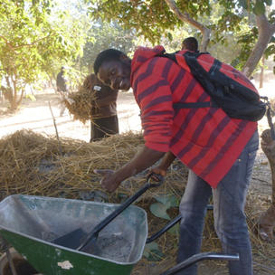 Learning to make compost
