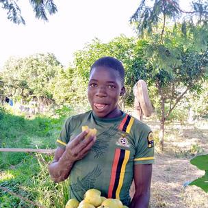 Chisikili crops:- passion fruit