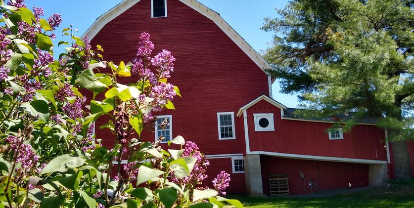The Barn in Springtime