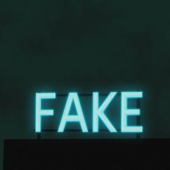 FAKE NIGHT