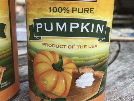 My kind of Pumpkin Pie