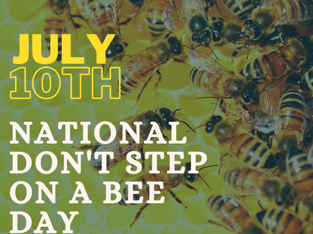 National Don't Step On A Bee Day : July 10th 2021