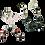 Thumbnail: Reversibel oorbellen. Rozekwarts & Lava & Tijgeroog   Set van 3.