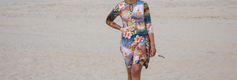 Organic LaLamour Flared Dress High Neck Venus Multicolor