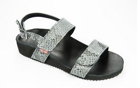 Springs shoe.JPG