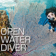 Open%20Water%20Diver_edited.jpg
