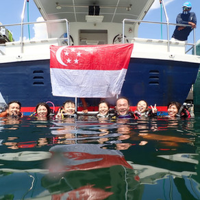 Diving In Singapore: Top Dive Sites In Singapore -  At Our Very Own Backyard!