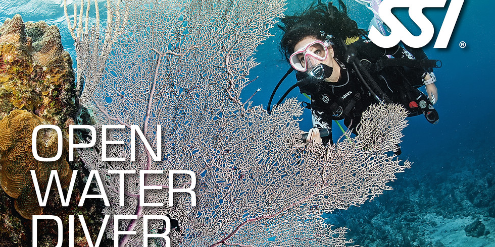 SSI Open Water Theory Class