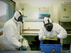 Wuhan Institute Of Virology Research Partner Took $750,000 In Pandemic Relief Fund