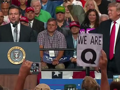 """🎥 The MS Media Sheepherders: """"Q-anon"""", Nothing To See Here"""