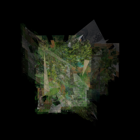 Image 2. Collaborative Speculation_Natur