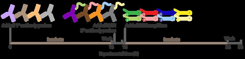 protocol-timeline_2IHC.png