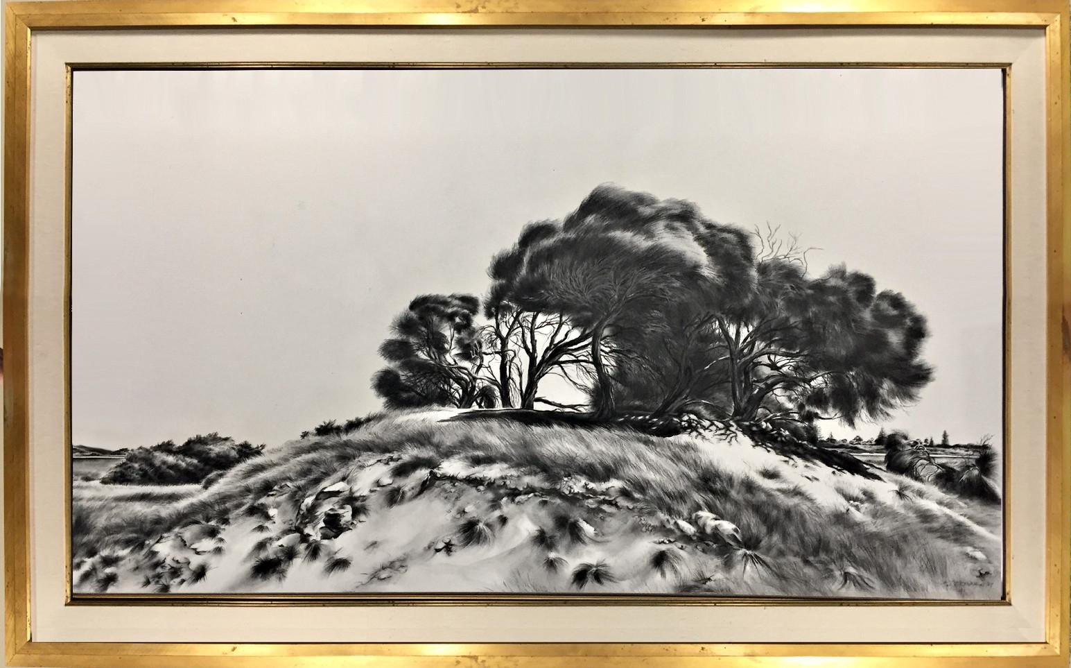 Rottnest Windswept Hill