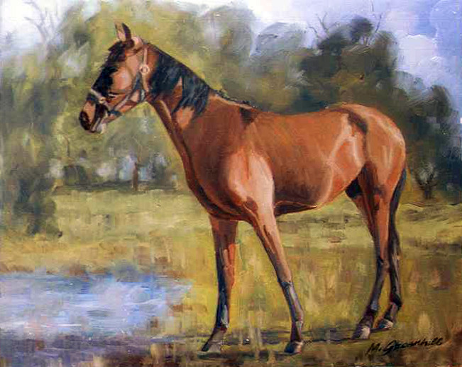 Mark Greenhill-Horse
